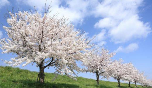 寒暖差が大きい春のヒートショックに要注意!